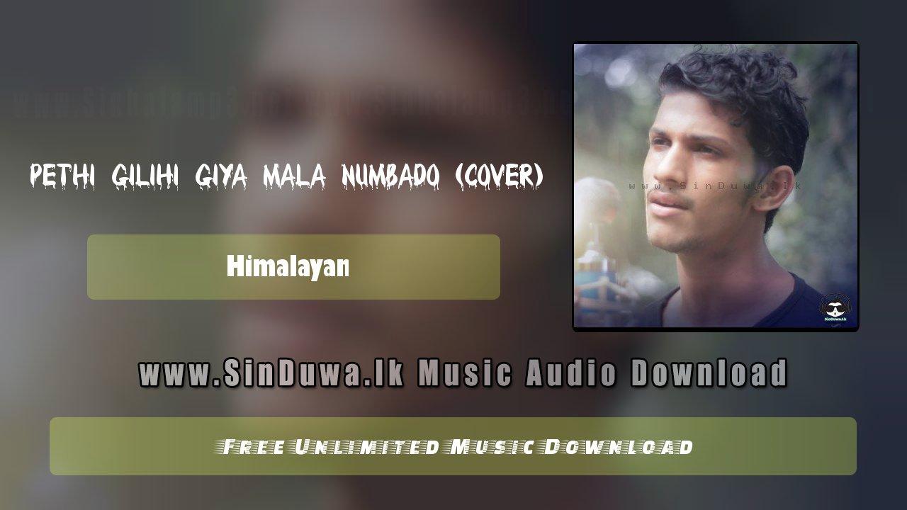 Pethi Gilihi Giya Mala Numbado (Cover)